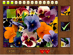 Parts of Picture:Flowers game