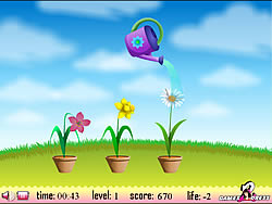 Flower Watering game