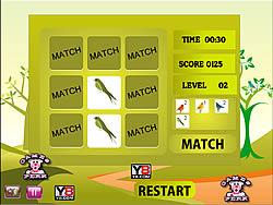 Birds Perfect Match game