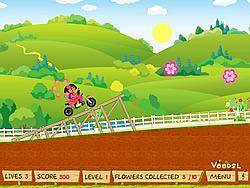 Dora Stunts game